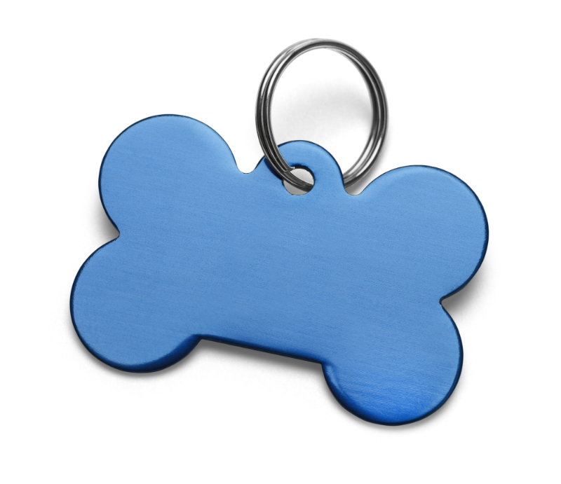 What You Need to Know About the City Tag for Your Dog